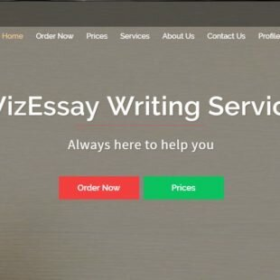 Wizessay.com Review